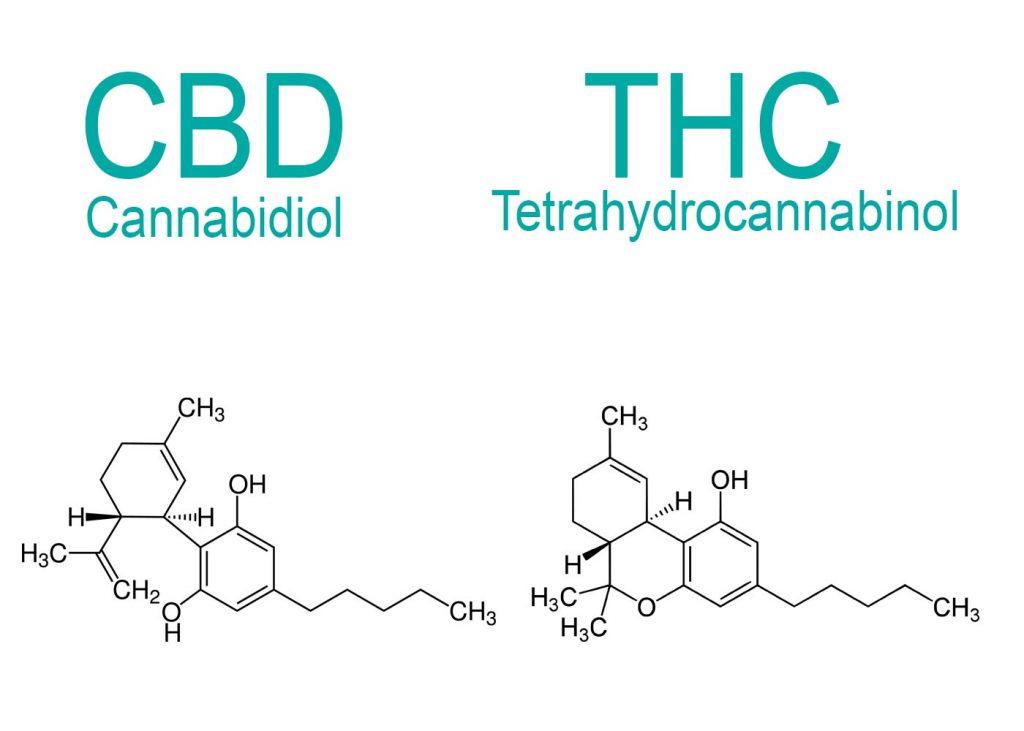 Wat is het verschil tussen THC en CBD